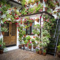 Do Not Let A Lack Of Space Keep You From The Joys Of Growing Your Own  Plants And Decorating Your Outdoor ...