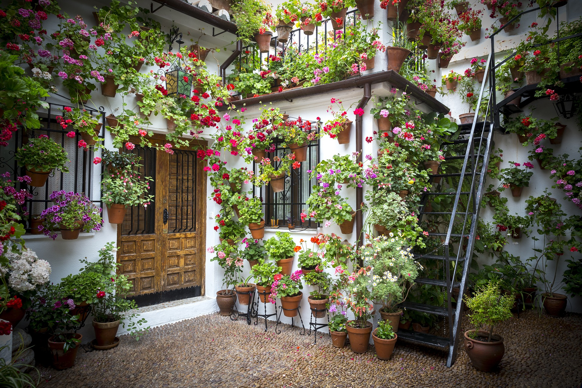 Ny Company Gives Tips For Growing A Lush Patio Garden